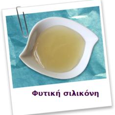 fytiki_silikoni_athinarom