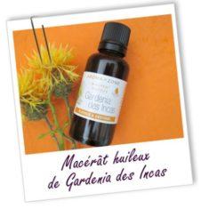gardenia-des-incas