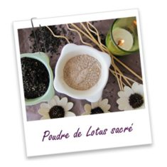 lotusacre