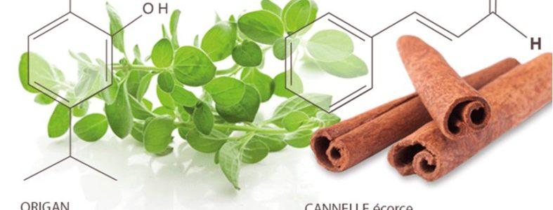 aromatherapy-secrets-1
