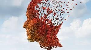 Η νόσος Αλτσχάιμερ & η μύτη μας!